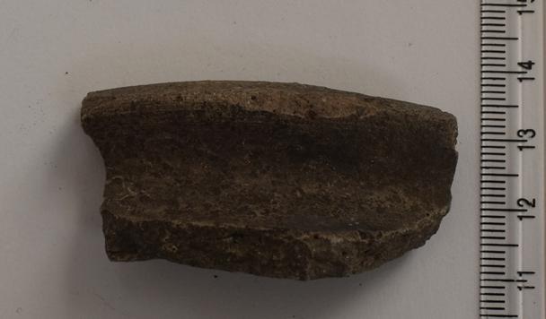 Археологія. Фрагмент гончарної посудини з відігнутим заокругленим краєм вінця. ХІ-ХІІ ст.