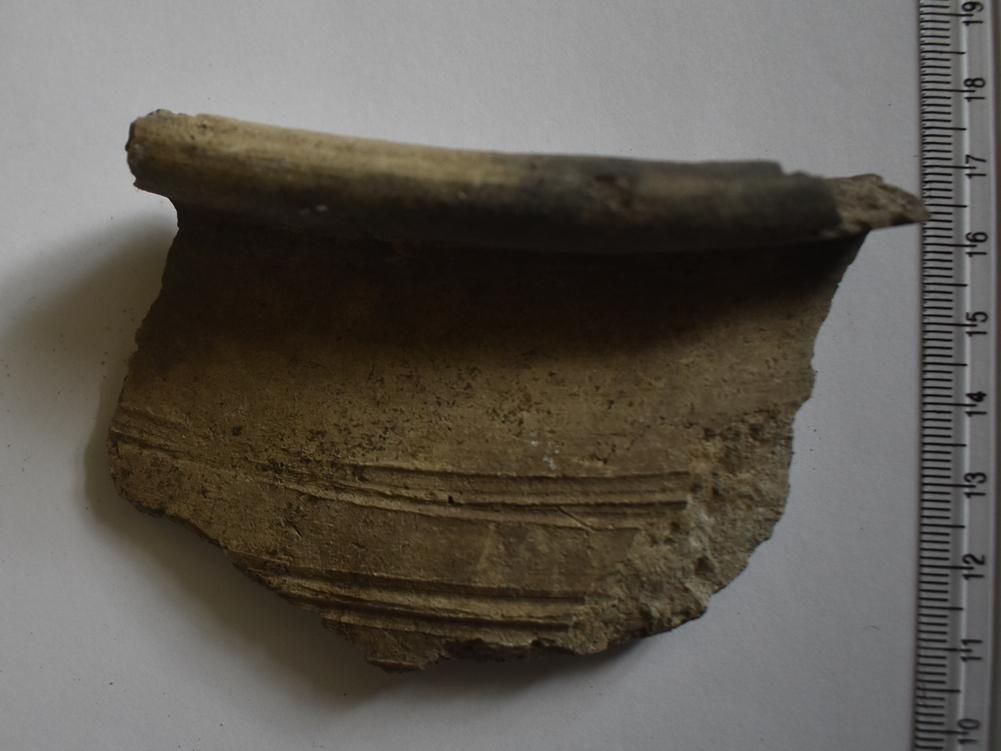 Археологія. Фрагмент гончарної посудини з відігнутим заокругленим краєм вінця, орнаментованої прокресленими горизонтальними смугами. ХІ-ХІІ ст.