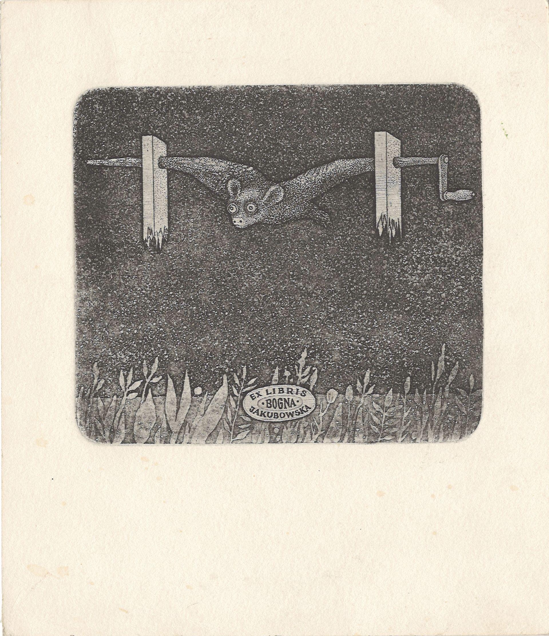 "Графіка. Екслібрис. ""Ex libris Bogna Jakubowski"" Стасиса Ейдригевичуса"