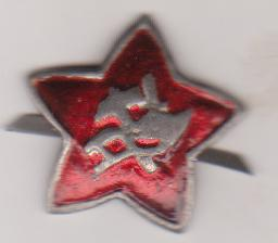 """Емблема. """"Червона зірка військослужбовця Червоної Армії"""""""